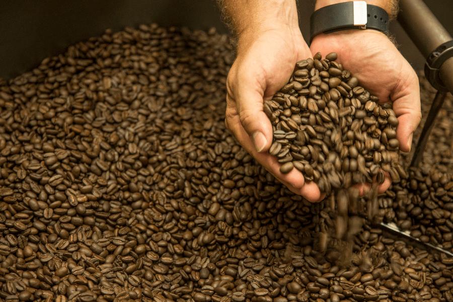 Coffee Appreciation Course